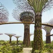 Duurzame ruimtelijke ontwikkeling in Singapore