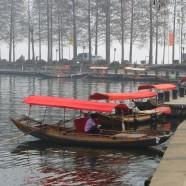 Workshop Wuhan East Lake Scenic Area