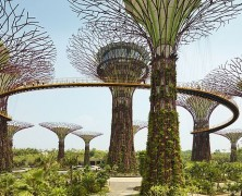 Sustainable and inclusive planning in Singapore